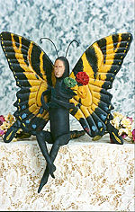 Collectible Cloth Doll - Swallowtail - Butterfly